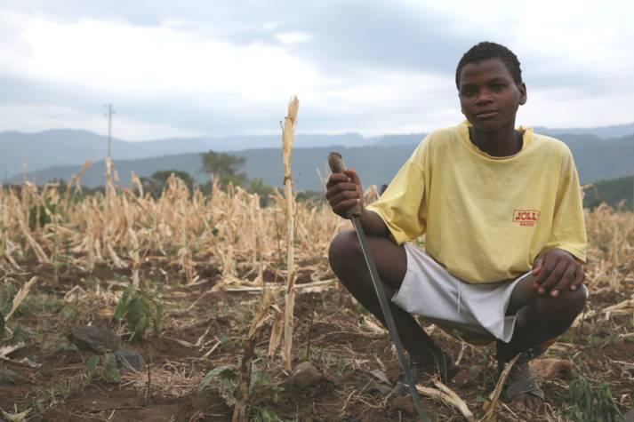 Dürre in Äthiopien-ein Kleinbauer auf seinem Feld. Dürre in Äthiopien-ein Kleinbauer auf seinem Feld. |  Bild: © USAID Africa Bureau [Public Domain]  - wikimedia commons