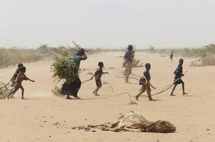 Eine Familie im Flüchtlingscamp Dadaab auf der Suche nach Feuerholz. Eine Familie im Flüchtlingscamp Dadaab auf der Suche nach Feuerholz.  |  Bild: © Oxfam East Africa - Wikimedia Commons