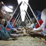 Kaffeearbeit Äthiopien | Bild (Ausschnitt): © DFID - UK Department for International Development [CC BY 2.0] - flickr