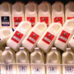 Milchüberproduktion Das europäische Problem der Milchüberproduktion wird nach Afrika verlagert - und hemmt dort die lokalen Märkte. | Bild (Ausschnitt): © liz west [CC BY 2.0] - Flickr