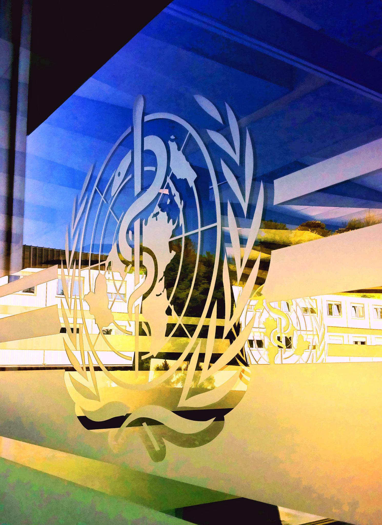"""Sollte die """"koordinierende internationale Gesundheitsorganisation"""" sein: Die WHO"""