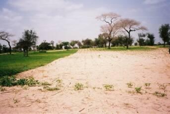 Böden in Ländern der Sub-Sahara: Immer attraktiver für Investoren Böden in Ländern der Sub-Sahara: Immer attraktiver für Investoren    Bild: © Rikolto [CC BY-NC 2.0]  - Flickr